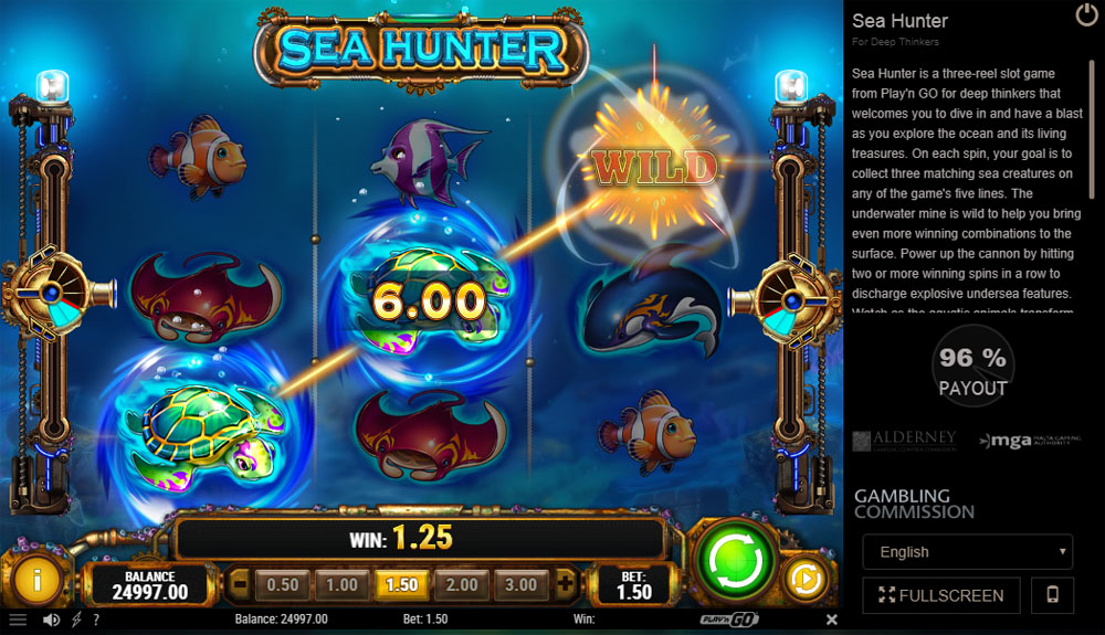 All microgaming 142803